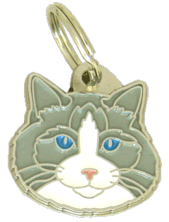 Ragdoll cat blue bicolor - pet ID tag, dog ID tags, pet tags, personalized pet tags MjavHov - engraved pet tags online